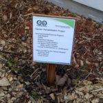 Garden Rehabilitation Project