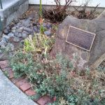 California Dreamin' garden plaque